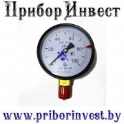 ДМ 05100 Манометр