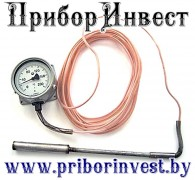 ТГП-100-М1 Термометр манометрический газовый показывающий